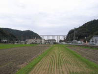Amarube_kyoryo_01