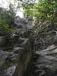 Sanbutsuji_02